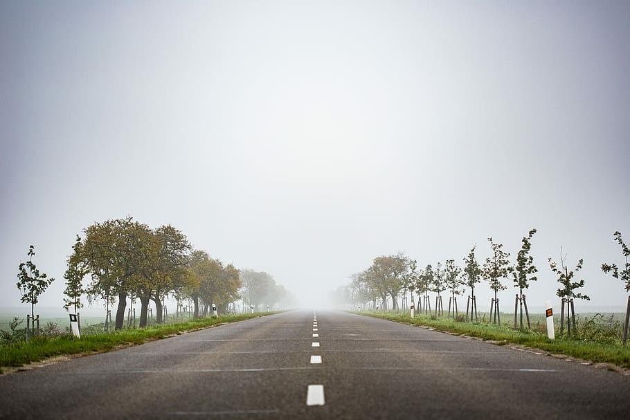 Foggy Road to Nowhere (Piqsels CC0)